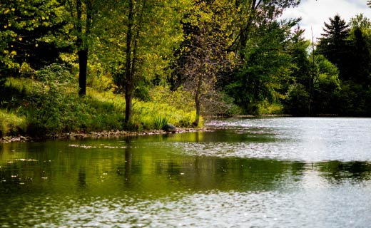 Pond Design and Creation Permits and Services